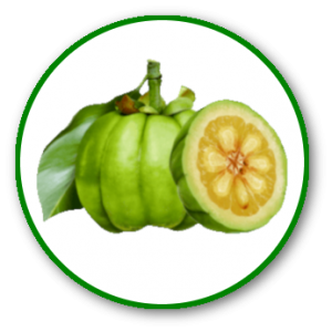 Phendora Garcinia: composition du complément alimentaire minceur
