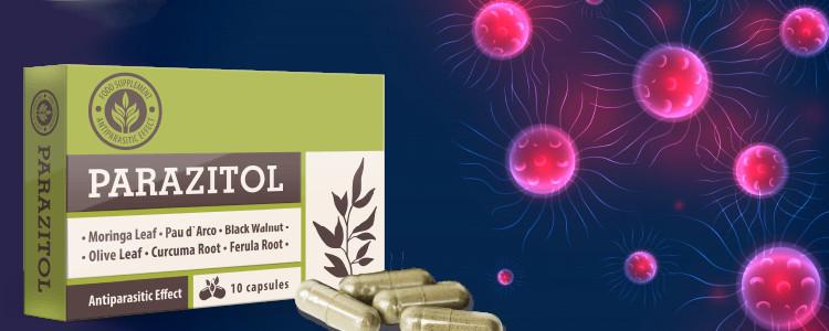 Parazitol ne contient que des ingrédients naturels.