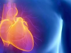 Les dernières façons de maintenir la santé cardiaque