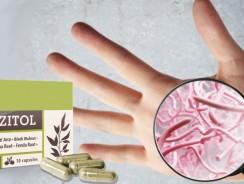 Parazitol – tout sur le produit, le prix, l'effet, l'application